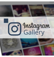 Instagram Gallery